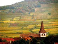 Alsace, France, family travel, wine, Route du Vin,soultravelers3