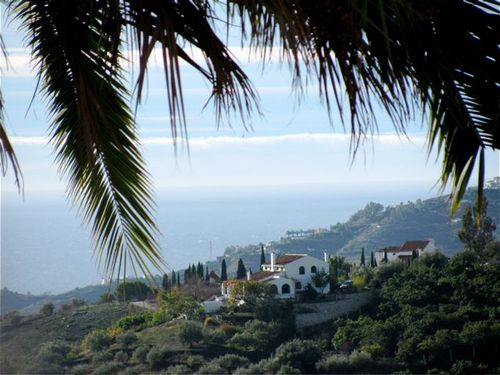 Beautiful med sea view, palms, spain, mediterranean