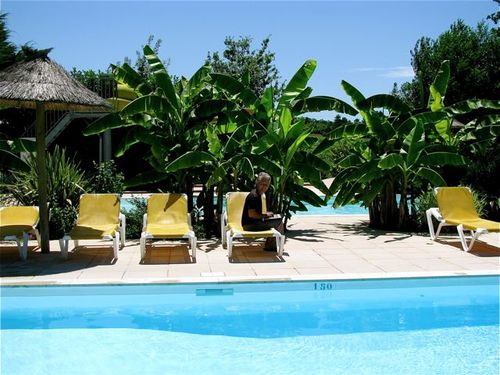 pool, vacation, Bordeaux, tropical, vineyards, digital nomad, camping