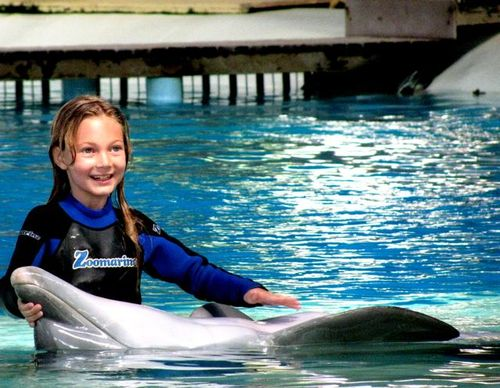 Family travel, girl learning up close & swimming with dolphins portugal