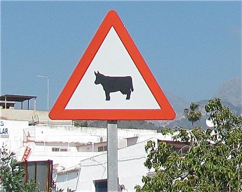 oxen crossing road sign, Andalusia Spain, soultravelers3, around the world travel