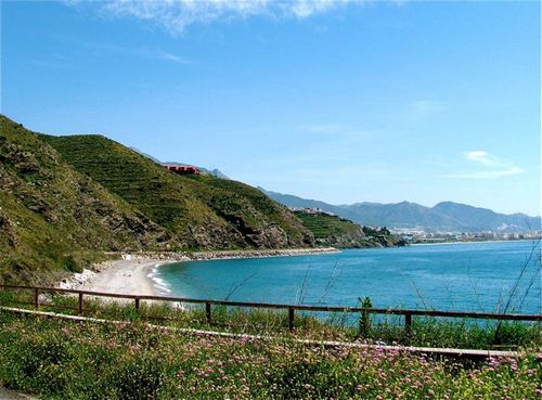 Family travel tip Costa del Sol beaches mountains spring flowers
