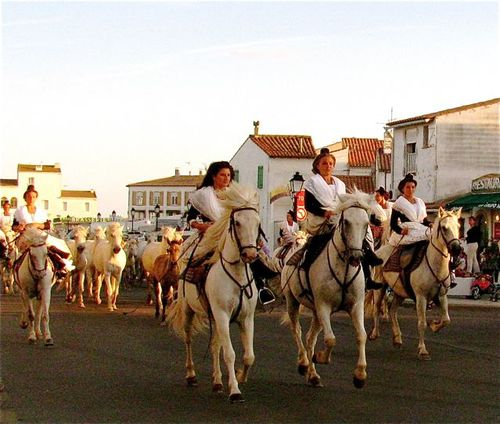 Camargue, France horse riding at sunset in traditional dress