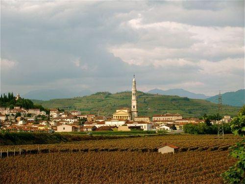 Tuscany wine field, Italy