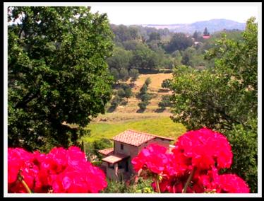 Tuscany Camping Europe Beautiful 5 star Chianti Hills