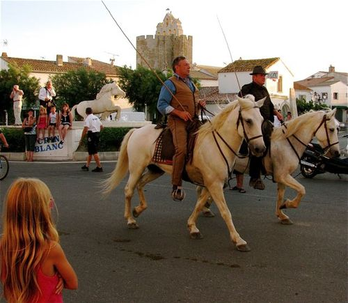 stunning horses Stes. Maries de la Mer, France guardian cowboys