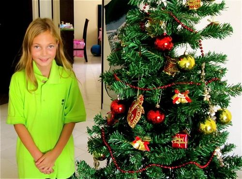 Christmas tree in Penang Malaysia