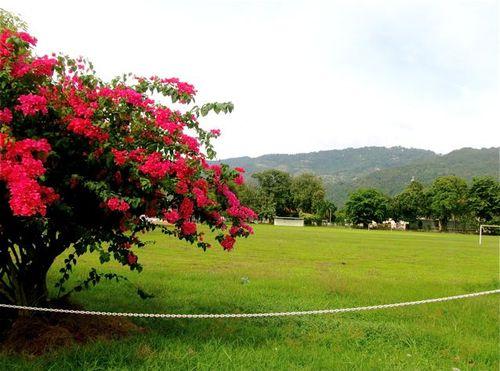 High school land Malaysia, country setting