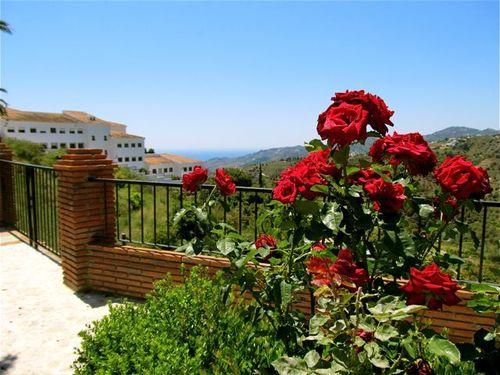 view of school, Med sea, hills in spain..a familiar walk
