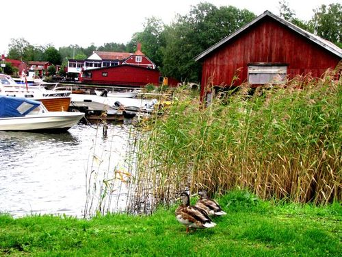 Family Travel Sweden: Grisslehamn Photo