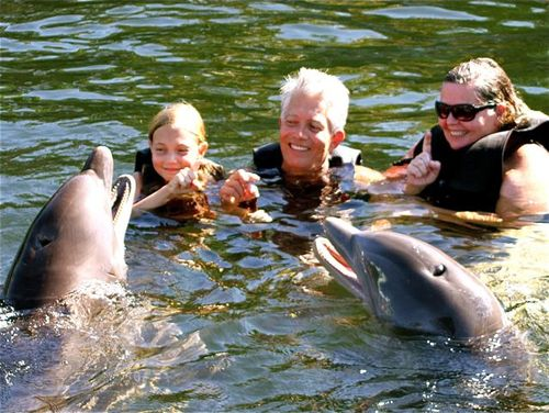 Swimming with dolphins in Key West