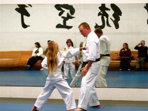 world school and karate