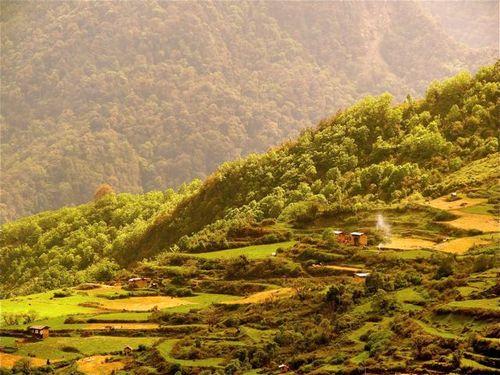 breathtaking Bhutan's verdant organic farms and pristine forests