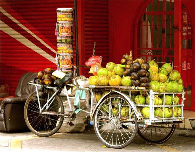 beautiful rickshaw photo filled with coconuts