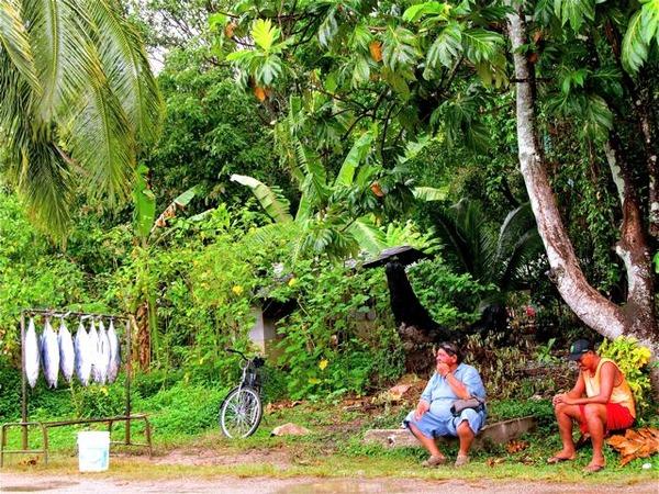 beautiful life in French Polynesia