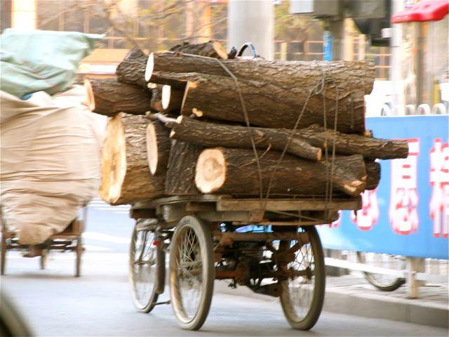 Beijing travel surprises and contrasts