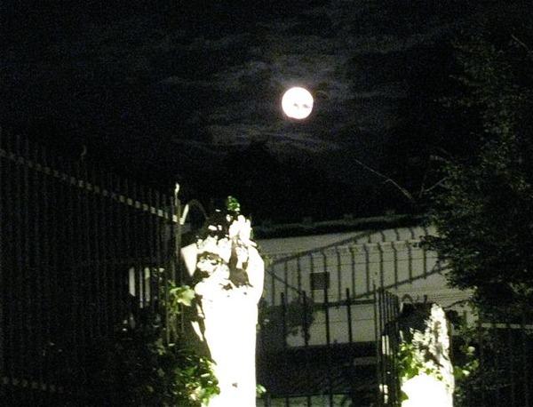 vienna travel moon