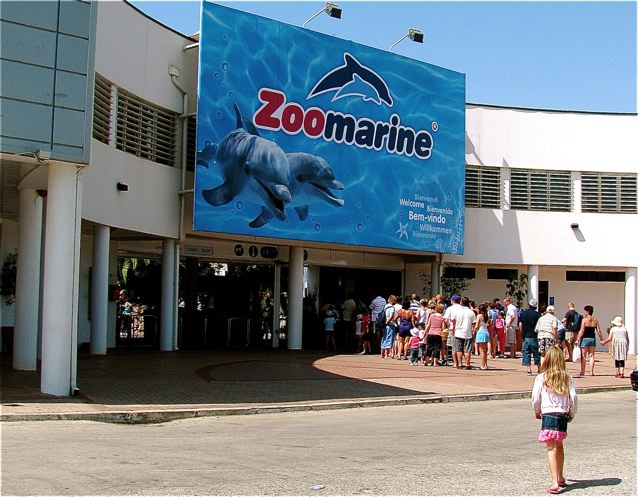 Zoomarine aquatic theme park Portugal dolphin swimming Europe