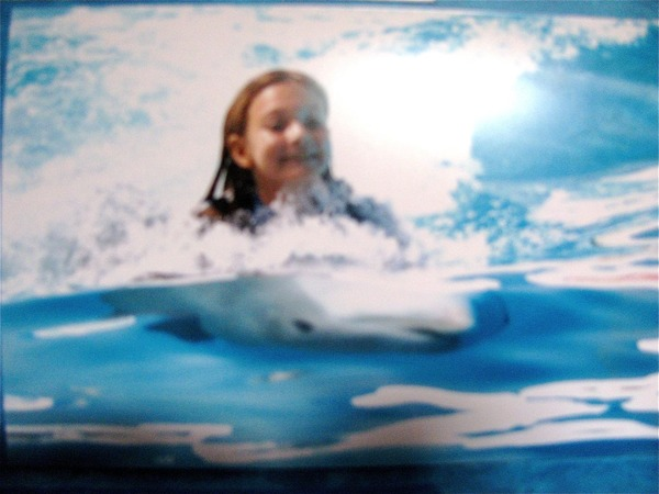 8 year old girl riding dolphin