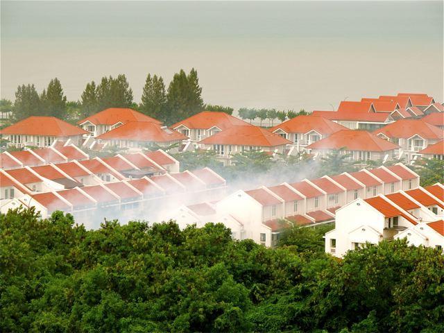 mosquito fogging and dengue Penang