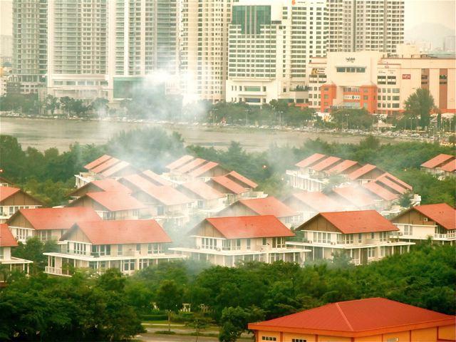 mosquito fogging and dengue Malaysia