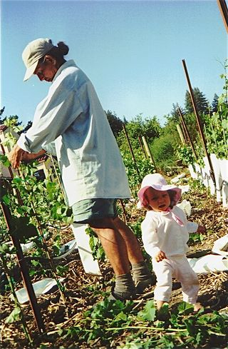 wine tasting with kids - small children love vineyards
