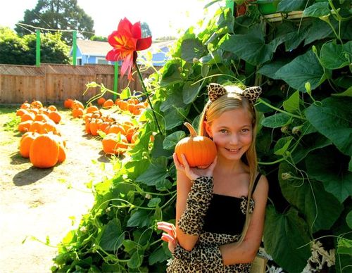 cute kid Halloween costume and pumpkins