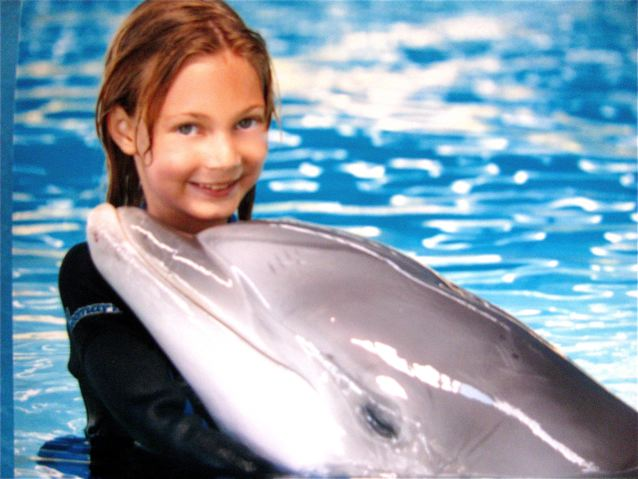 swimming with dolphins and a close encounter