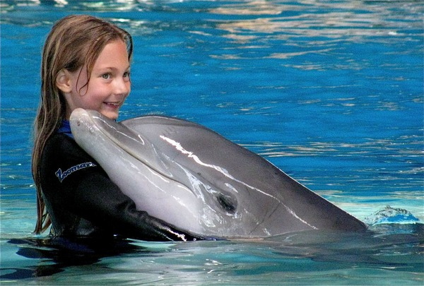 little girl almost kissing dolphin
