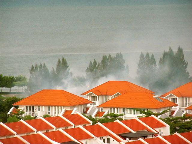 mosquito fogging and dengue
