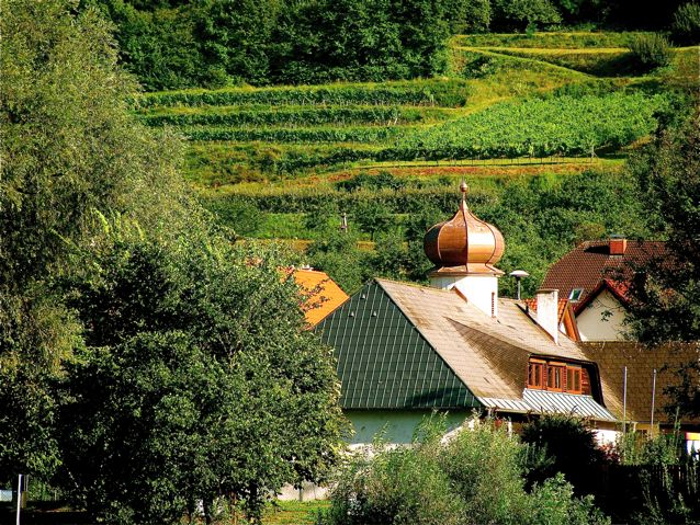 Austria's beautiful wine country