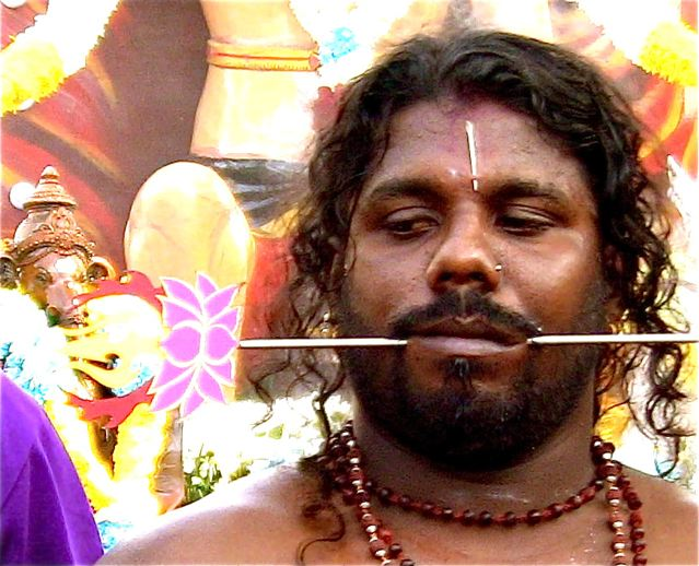 tranced out Thaipusam devotee with piercings in mouth, face and back