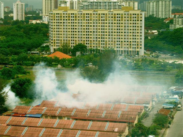 Dengue fever and mosquito fogging in Asia