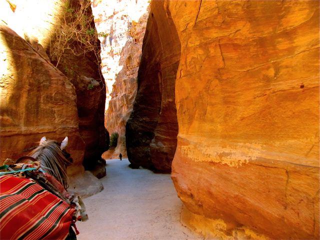 Long term family travel -exploring Petra together