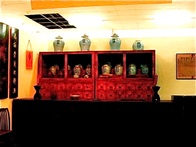 I love these medicinal TCM cabinets in Asia - every draw filled with different herbs