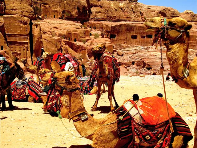 Trip to Petra Jordan - colorful camels, beauty and awesome history