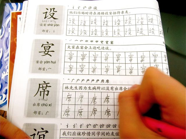 Fluent Mandarin - reading, writing, talking like a native