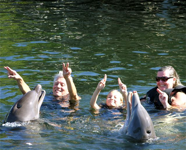 Extended travel as a family - playing with dolphins in Key West