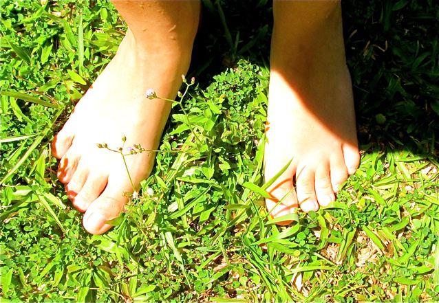 barefoot in the grass Grounding - Earthing - Nature = Better Health