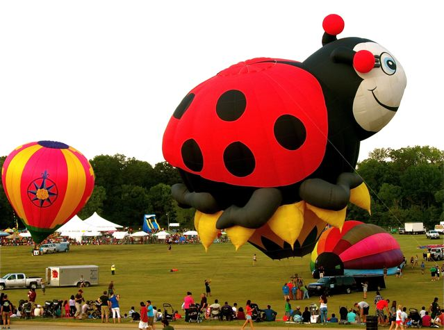 Hot Air Balloon Festival!