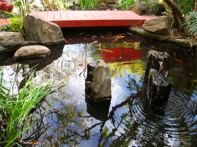Peace Awareness Labyrinth & Gardens - Best Secret zen garden & pool in LA!