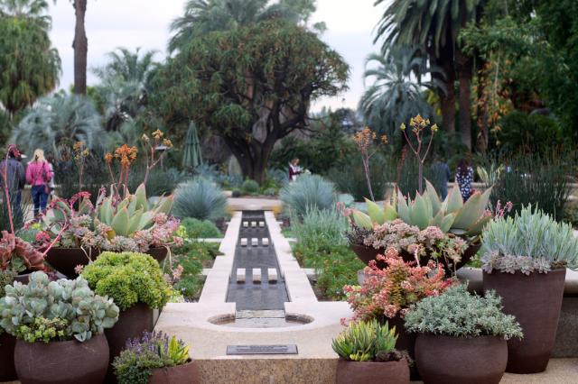 Visiting the Huntington Botanical Gardens Los Angeles