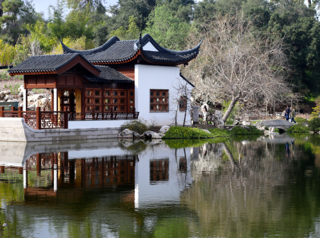 Don't miss the classical Chinese Garden while Visiting the Huntington Botanical Gardens in Pasadena