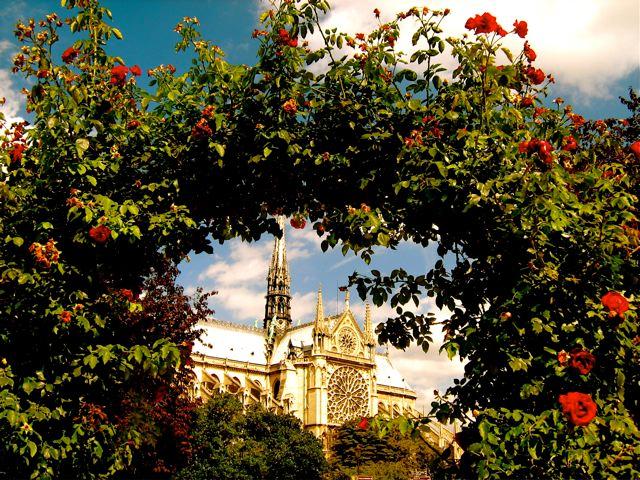 Best of Europe: Summer Trip - Paris Notre dame