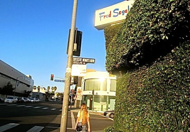No car and  walking in Los Angeles
