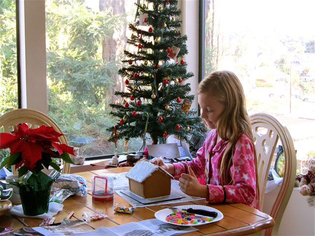 Happy Holidays! Mozart making a Ginger bread house in California