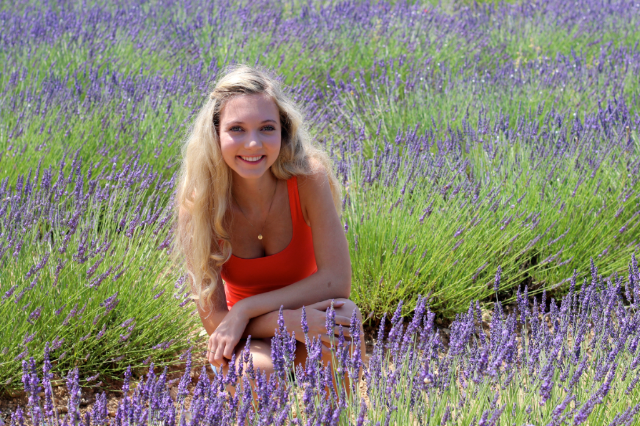 lavender field and pretty blonde girl