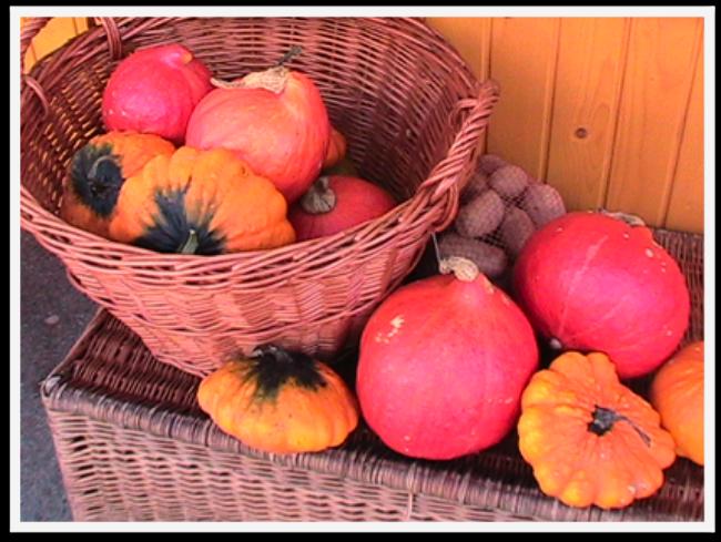 Stunning Fall Colors Around the World! Slovenia