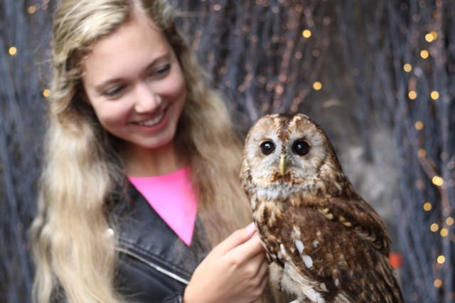 Mozart Dee in Edinburgh holding owl meme