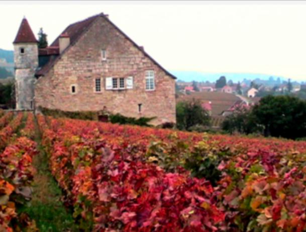 Autumn Travel - Best Destinations!